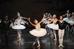 Swan Lake lead curtain call-ballet Swan Lake Royalty Free Stock Images