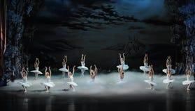 Swan Lake in the morning-The last scene of Swan Lake-ballet Swan Lake Royalty Free Stock Photography