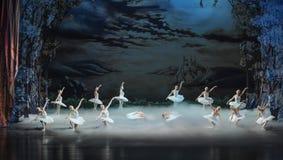 Swan Lake in the morning-The last scene of Swan Lake-ballet Swan Lake Stock Image