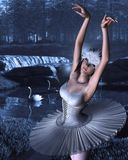 Swan Lake - Odette and Swans Stock Images