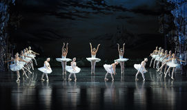 Swan Lake Shore-ballet Swan Lake Royalty Free Stock Photography
