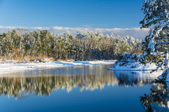 Swan Lake Winter. Reflections in a pond following a snow storm Royalty Free Stock Photos