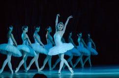 Swan Lakebalett royaltyfria bilder