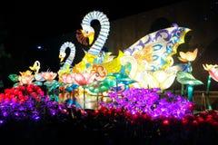 Swan lampion. At Malang night paradise stock photos