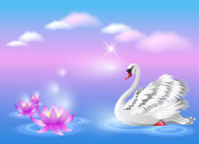 Swan and lily Stock Image