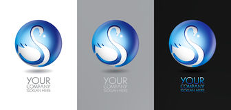 Swan logo design Stock Photography
