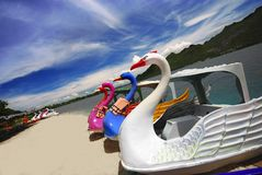 Swan paddle boats. Colorful swan paddle boats beside the lake,Thailand Royalty Free Stock Images
