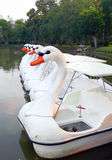 Swan paddle boats. White swan paddle boats in a garden& x27;s pond Stock Photo