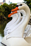 Swan Pedal Boat / Pedal Boat / Swan Pedal Boat Floating in Lake Royalty Free Stock Photography