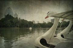 Swan Pedal boat in the pond Stock Photos
