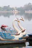 Swan pedal boats in Hanoi Stock Image