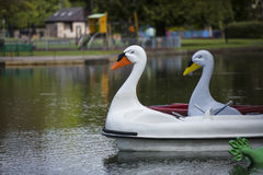 Swan pedalos on a boating lake Stock Images