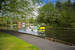 Swan pedalos on a boating lake Stock Image
