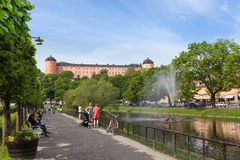 Free Swan Pond Of Uppsala. Stock Photo - 72318420