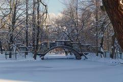 Swan pond in winter park. A winter scene of Kosta Khetagurov park, Vladikavkaz, North Ossetia-Alania, Russia. 2014-02-01. Stock Photo