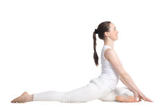 Swan Pose Stock Photography