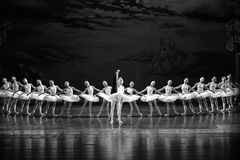 The swan and the prince is a fairy tale-The Swan Lakeside-ballet Swan Lake Stock Photos