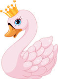 Swan Princess Stock Photo