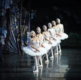 Swan queue-ballet Swan Lake Royalty Free Stock Images
