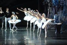Swan queue-ballet Swan Lake. In December 20, 2014, Russia's St Petersburg Ballet Theater in Jiangxi Nanchang performing ballet Swan Lake Royalty Free Stock Photos