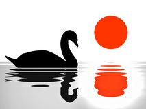 Swan reflection on the lake/ sunset/silhouette illustration. Silhouette illustration of swan reflection on water and sun Stock Photo