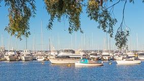 Swan River Moorings Stock Image