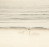Swan and a seagull  in the fog. Royalty Free Stock Photos