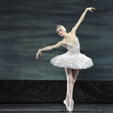 Swan Seeballett führte durch russisches königliches Ballett durch Lizenzfreies Stockbild