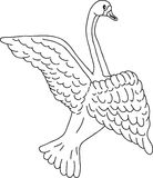 Swan sketch, vector Royalty Free Stock Photos