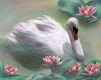 Swan Song. Paining of a swan swimming among water lilies Stock Images