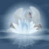 Swan Song, Fantasy Swan And Lotus Blossom Royalty Free Stock Photos