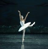 The Swan swim-ballet Swan Lake. In December 20, 2014, Russia's St Petersburg Ballet Theater in Jiangxi Nanchang performing ballet Swan Lake stock photo