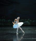 The Swan swim-ballet Swan Lake. In December 20, 2014, Russia's St Petersburg Ballet Theater in Jiangxi Nanchang performing ballet Swan Lake royalty free stock photos