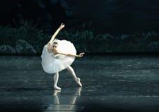 The Swan swim-ballet Swan Lake. In December 20, 2014, Russia's St Petersburg Ballet Theater in Jiangxi Nanchang performing ballet Swan Lake royalty free stock photography