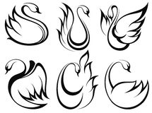 Swan symbol set Stock Images