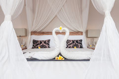 Swan towel Stock Photos