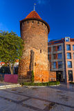 Swan tower in Gdansk Stock Images