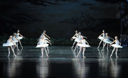 The swan Tribe-ballet Swan Lake Stock Images