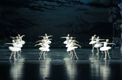 The swan Tribe-ballet Swan Lake Stock Photography