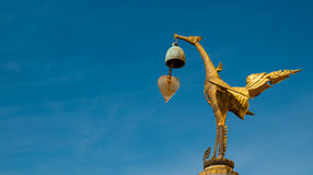 Swan in Orion Thailand. Swan on the wat saket,Bangkok,Thailand Royalty Free Stock Photo