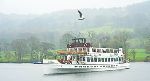 Swan on Windermere after refit Stock Image
