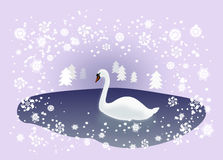 Swan in Winter Landscape Royalty Free Stock Photography