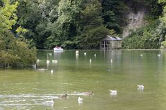 Swanbourne Lake at Arundel. Sussex. England Royalty Free Stock Image