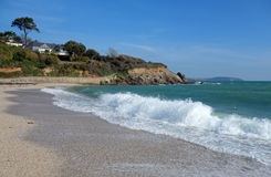 Swanpool strand i Falmouth Cornwall England. Arkivfoto