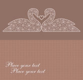 Swans. Card with lace Two graceful swans in love Royalty Free Stock Photo