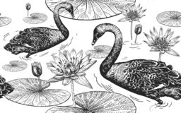 Free Swans And Water Lily. Seamless Pattern Royalty Free Stock Images - 125521059