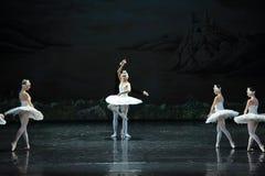 The swans are Aojita girl-ballet Swan Lake Royalty Free Stock Photo