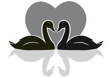 Swans black. Silhouette of two swans on a background of heart Stock Image