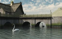 Swans by the Bridge Stock Image