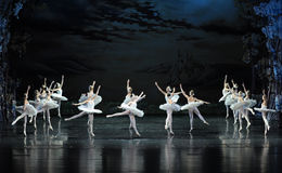 Swans flew over the lake-ballet Swan Lake Royalty Free Stock Image